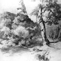 Pécskő szikla. 1892